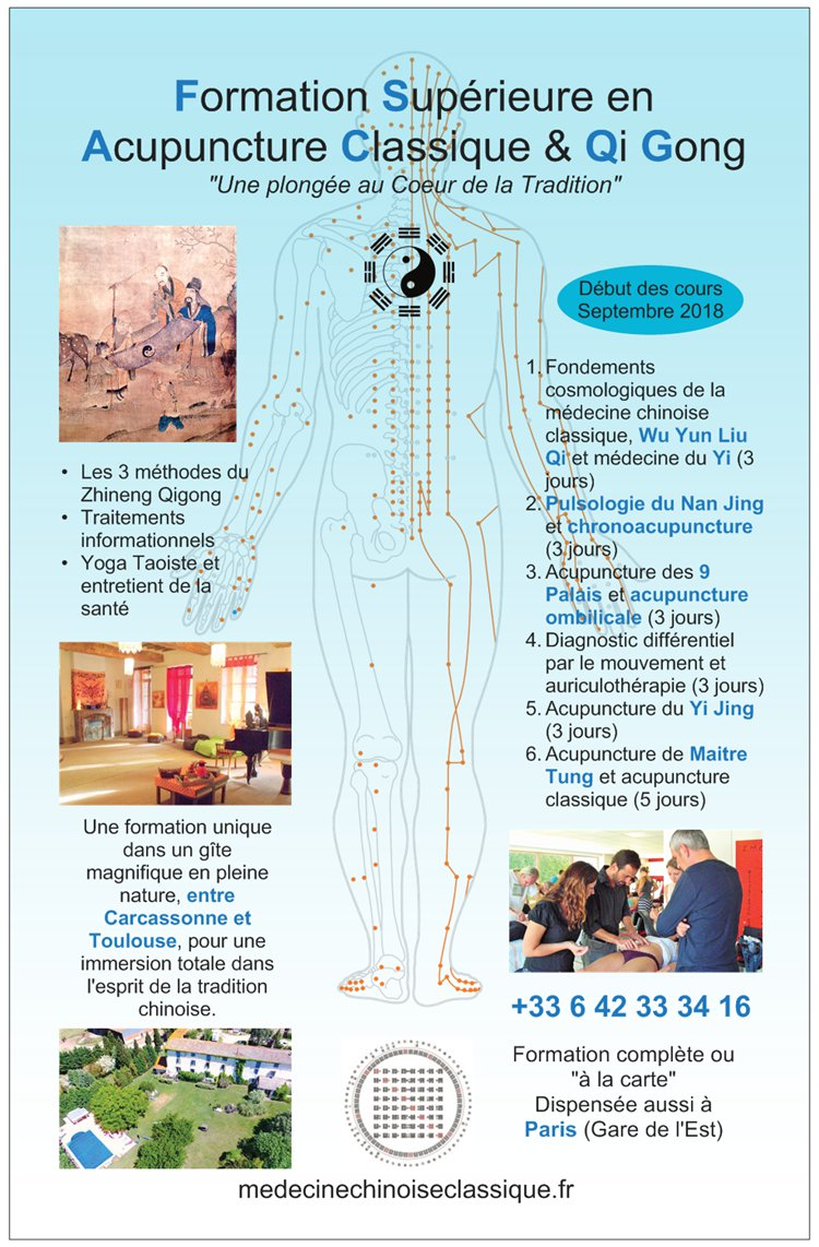 formation acupuncture